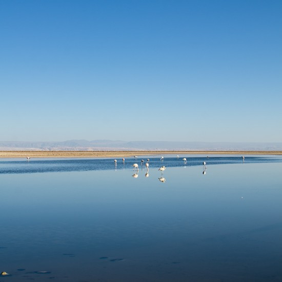 autres paysages de lagunes 12